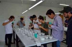 Projeto de cultivares de café no Cerrado Mineiro apresenta primeiros resultados
