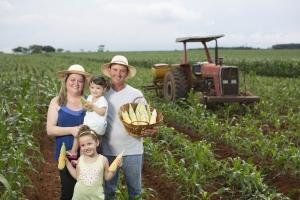 SP: agricultura familiar paulista recebe investimento de R$ 3,8 milhões