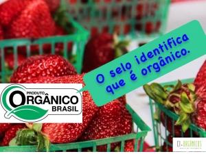 Falsos produtos orgânicos se espalham pelo país; saiba como evitá-los