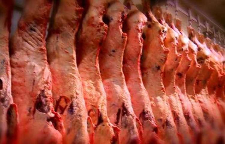 País fatura mais com exportações de carne bovina, suína e de frango em fevereiro