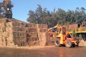 Sistema calcula quantidade de palha ideal a ser deixada no solo
