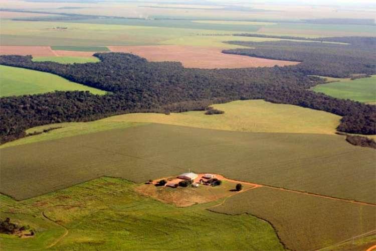SNA defende venda de terras para estrangeiros
