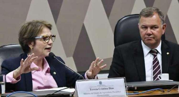 Ministra debate MP da regularização fundiária com parlamentares