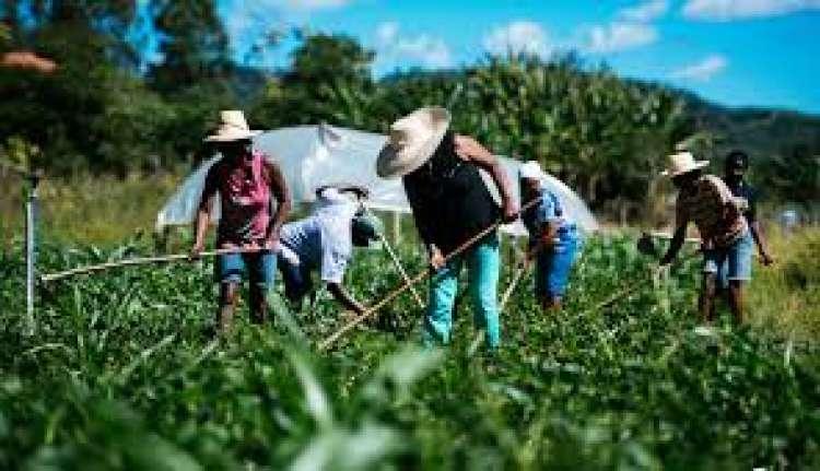 Secretário do Mapa anuncia novo cadastro da agricultura familiar para junho