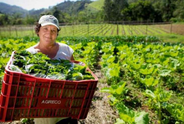 Mulheres do Agro: a força e o talento feminino nas mais diversas áreas da agropecuária brasileira