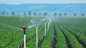 Área irrigada aumenta no Brasil