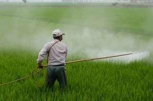 Maior consumidor de agrotóxicos no país, SP possui apenas 80 fiscais em todo o estado