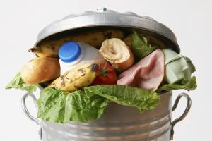 Os desperdícios por trás do alimento que vai para o lixo