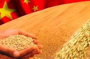 China afrouxa regulamentos de importação de soja