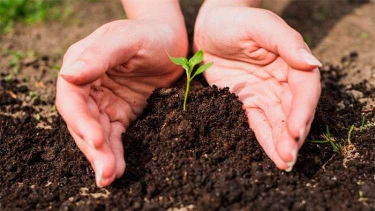 SC irá investir na produção rural sustentável
