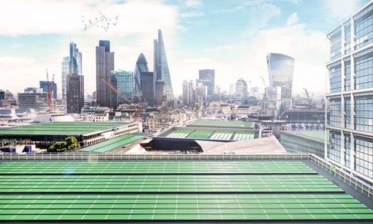 Cientistas desenvolvem 'folha biosolar' para purificar o ar das cidades