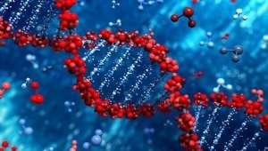 Agricultura favoreceu mutação de genes humanos