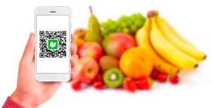 Conheça a rastreabilidade vegetal e a sua importância no mercado agrícola