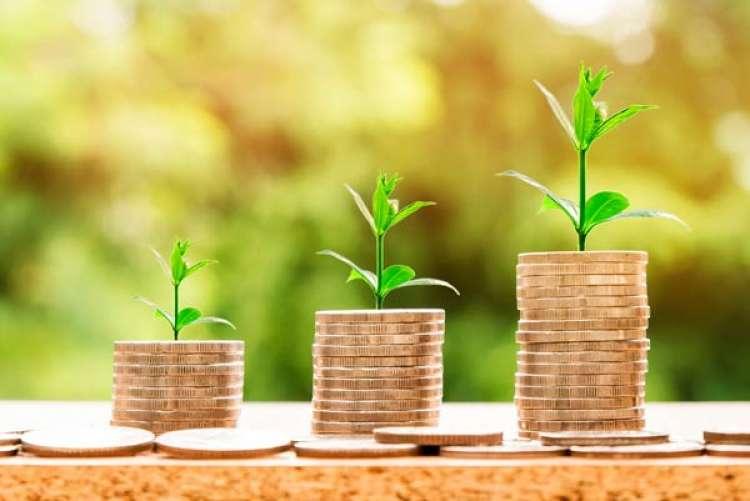 Defesa agropecuária começa o ano com investimentos de 2,2 milhões