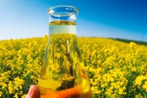 50 melhores empresas de agronegócio do Brasil