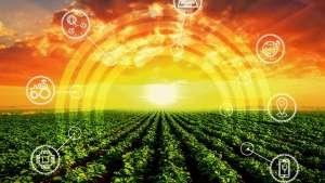 Governo pretende criar polo de inovação agropecuária no Rio