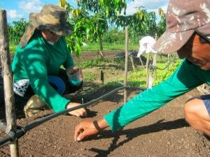 Plano Safra 2018/2019 tem R$ 31 bilhões para financiar a agricultura familiar