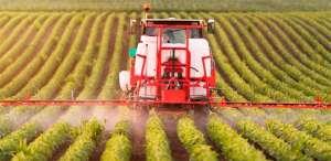 Estudo vai mostrar queda na contaminação por defensivos em vegetais