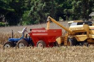 PIB do agro primeiro trimestre teve redução de 0,5%