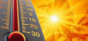 DESAFIOS ENFRENTADOS NA PRODUÇÃO DE HORTALIÇAS DEVIDO À ALTAS TEMPERATURAS